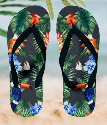 Tongues tropiques & toucan